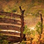 """Strong Fences"" by westinimages"