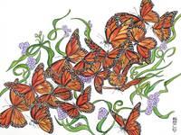 Monarch Butterflies Drawing/Illustration/Felt Tip Decorative