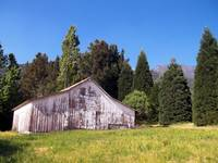 A Bit Of Country - Oak Glen, California