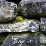 """Stone Wall, Dee Oberle"" by GypsyChicksPhotography"