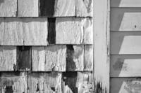 Shingles and Siding