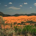 """""""Coral Sand Dunes"""" by jebrunner58"""