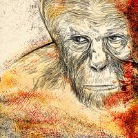 The rise of the planet of the apes 2 Art Prints & Posters by S Rain