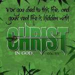 """In Christ"" by cyberscribe"