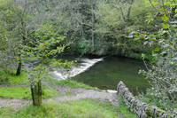 Weir Below Lover's Leap, Dovedale (30353-RDA)