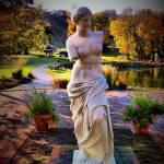 """Venus"" by geoffe"