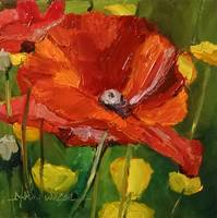 Poppy Profusion!