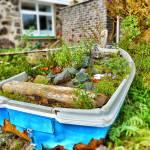 """Garden Boat"" by blessedwalnut"