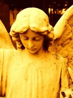 Sepia Angel 2