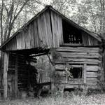 """Tennessee Shed"" by ginadittmer"
