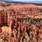 """Bryce Canyon"" by SylviaClaiborne"