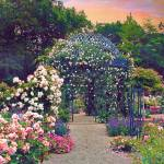 """The Rose Arbor"" by JessicaJenney"