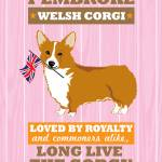 """Pembroke Welsh Corgi Pink/Orange"" by Nose2Tales"
