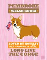 Pembroke Welsh Corgi Pink/Orange