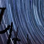 """Venus Jupiter Cactus Star trail"" by SeanParkerPhotography"