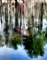 Abstract Pond Reflection