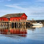"""Coupeville Wharf Reflection"" by gopnw"