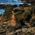 """California Coastline Series IV"" by JimPavelle"