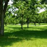 """Parks"" by Mya"