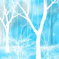 In Winter Art Prints & Posters by Charlene Murray Zatloukal