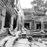 """""""Cambodia"""" by jenfu"""