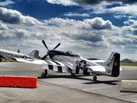 P-51 Mustang: Quick Silver
