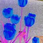 """Blue Tulip Abstract"" by PhotographsByCarolFAustin"