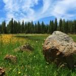"""Different Boulder Same Springtime"" by jameseddy"