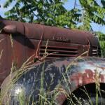 """""""Dodge"""" by dunklebob"""