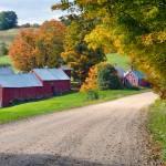 """Jenny Farm"" by Wilford"