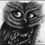 """Owl"" by ArtByAlycia"