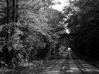 Red Dirt Road B&W