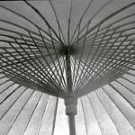 """Japanese Umbrella"" by CreativeSpacesPhotography"
