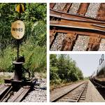 """Train Collage"" by selectCRAIG"