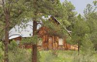 Log Cabin in the Pines