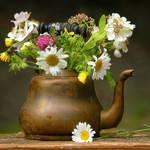 """""""Teapot Vase"""" by Ninas4otos"""
