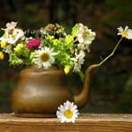 """""""Teapot Vase-2"""" by Ninas4otos"""