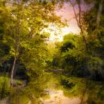 """""""Reflecting on Spring"""" by JessicaJenney"""