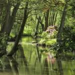 """""""Horsham River,"""" by carol29hynes"""
