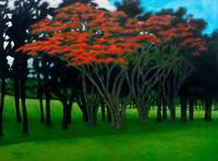 Tree of Fire at Campestre