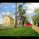 Landscapes gallery