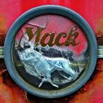 """Mack Attack"" by bavosiphotoart"