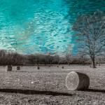 """Liquid Sky"" by geophotos"