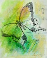 Butterfly in Green