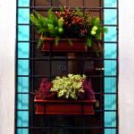 """""""Cyan Window"""" by raetucker"""