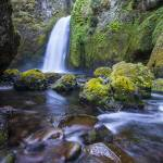 """Wahclella Falls Summer"" by stillwildphotography"