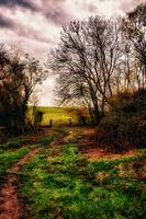 Muddy Country Path HDR