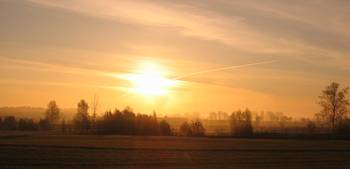 POLAND - COUNTRY SIDE - SUNRICE