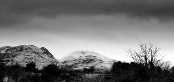 monochromatic landscapes