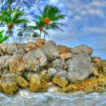 """Barbados Beach"" by agroth"